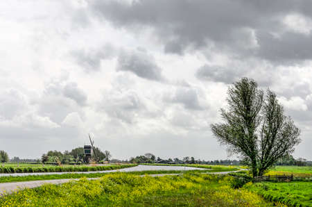 Traditional landscape in the Alblasserwaard polder in the Netherlands with windmill, tree, canal and road under a dramatic sky in springtime