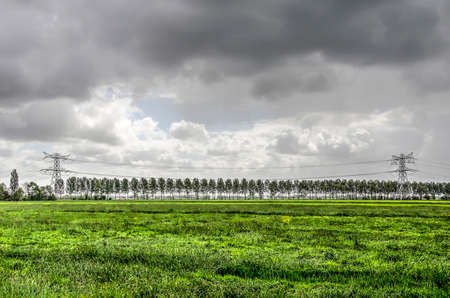Landscape in the Alblasserwaard polder in the Netherlands with grass meadows, power lines and a row of trees Stockfoto