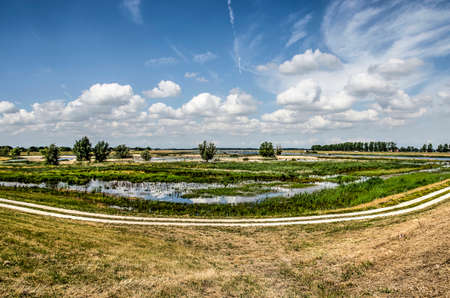 Curving concrete bicycle path along the wetlands in the IJseldelta room for the river zone near Kampen, The Netherlands under a blue sky with fluffy clouds