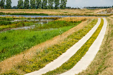 Bicycle path consisting of two rows of concrete tiles separated by a strip of grass, along the wetlands next to Reevediep river channel near Kampen, The Netherlands