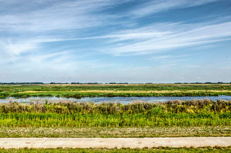 Concrete bicycle path along the wetlands next to the new Reevediep river channel near Kampen, The Netherlands, created to prevent flooding of the IJssel river under a summer sky with cirrus clouds