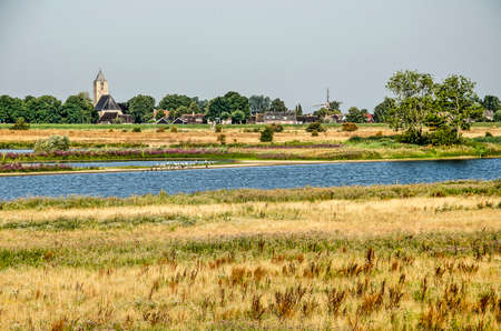 View across the floodplains at Vreugerijkerwaard nature reserve near Zwolle, the Netherlands, with wild vegetation,river channels and on the other bank the village of Zalk