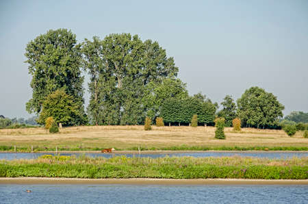 View across two river channels, newly created for the sake of flood prevention, in the floodplains at Vreugerijkerwaard nature reserve near Zwolle, the Netherlands