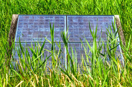 Set-up of four solar panels surrounded by and partly obscured by tall grass Banco de Imagens