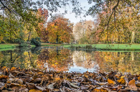 Autumn scene in The Park, Rotterdam, The Netherlands, with colorful trees, fallen leaves and a reflective pond