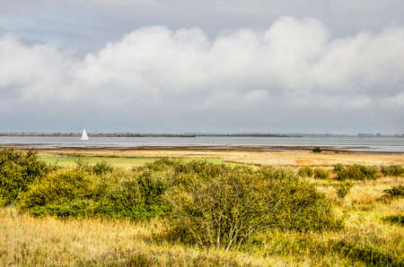 View from the dike on the north coast of the island of Schouwen-Duiveland, The Netherlands towards shrubs and grasses on the adjacent wetlands and lake Grevelingen beyond