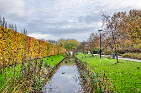Rotterdam, The Netherlands, November 23, 2019: autumn scene in Museumpark with a dramatic sky, a beech hedge, a footpath and a canal with ducks
