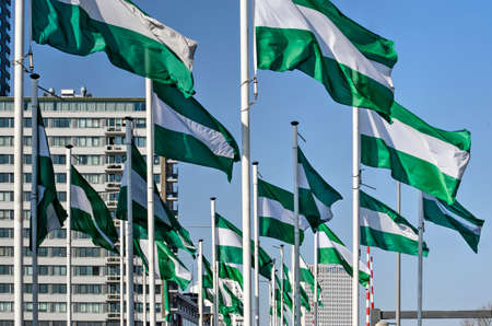 Rotterdam, The Netherlands, April 5, 2020: two dozen of the  green-white-green Rotterdam city flag on Boompjes boulevard, with modern buildings in the background under a blue sky Editorial