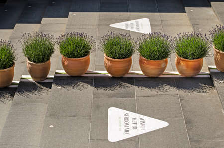 Rotterdam, The Netherlands, May 17, 2020: pots with lavender and arrows on a staircase to guide pedestrian flows in Koopgoot shopping street, as a covid-19 measure Editorial