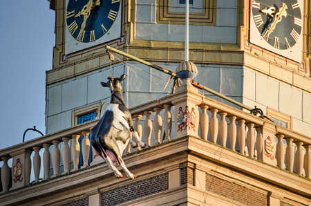 Kampen, The Netherlands, July 30, 2020: plastic cow, traditionally suspended from the clock tower as a reference to a historical story 新闻类图片