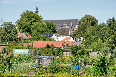 Hattem, The Netherlands, July 31, 2020: the town's church towering above houses and gardens 新闻类图片