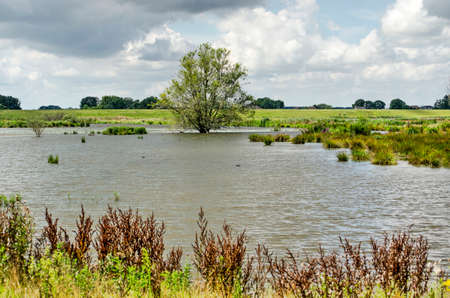 Landscape near Kampen, The Netherlands, with the new Reevediep river channel, created to prevent flooding of the river IJssel 免版税图像