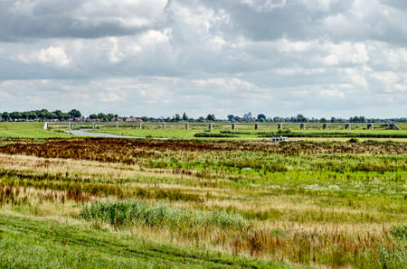 Kampen, The Netherlands, July 26, 2020: view across the floodplains of the new Reevediep river channel, with grass, already, sorrel and other low vegetation