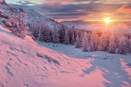 snowfield: Landscape with purple colors, mountains, forest and snowfield. South Ural, Russia