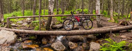touring: Panorama of wooden bridge, trees and touring bike