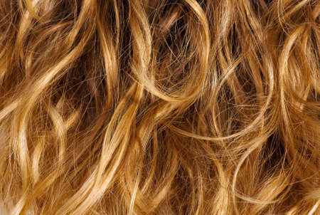 blond streaks: Blonde curly hair - background texture Stock Photo