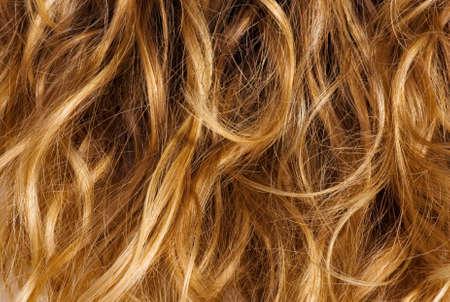 wild hair: Capelli ricci Biondi - texture di sfondo