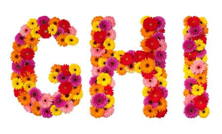 g alphabet: Letter G H I - flower alphabet isolated on white background Stock Photo