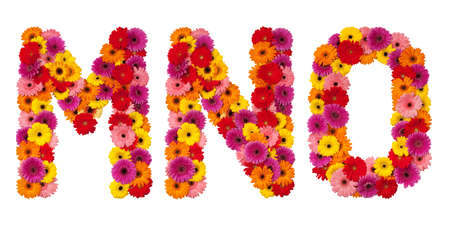 Letter M N O - flower alphabet isolated on white background photo