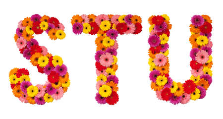 Letter S T U - flower alphabet isolated on white background Фото со стока
