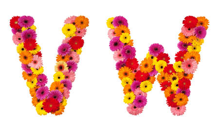 naturalistic: Letter V W - flower alphabet isolated on white background Stock Photo