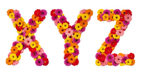 Letter X Y Z - flower alphabet isolated on white background Фото со стока