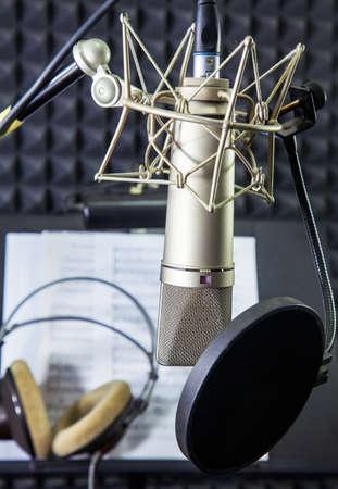 estudio de grabacion: Micr�fono de condensador en sala de grabaci�n vocal