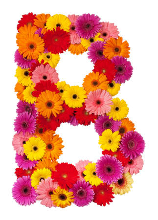 Letter B - flower alphabet isolated on white background photo
