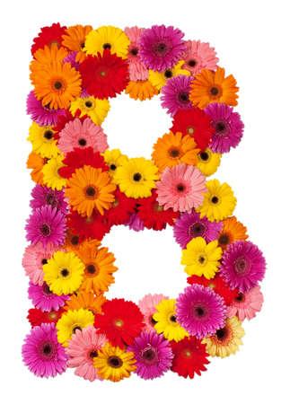 group b: Letter B - flower alphabet isolated on white background