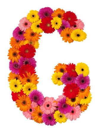 g alphabet: Letter G - flower alphabet isolated on white background Stock Photo