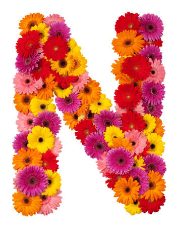 Letter N - flower alphabet isolated on white background photo