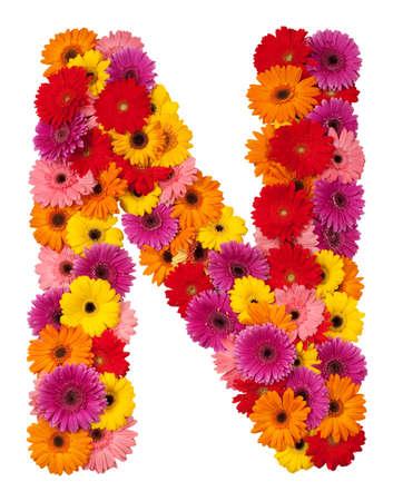 Letter N - flower alphabet isolated on white background