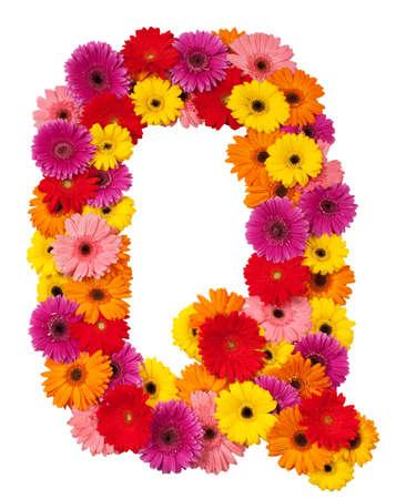 Letter Q - flower alphabet isolated on white background