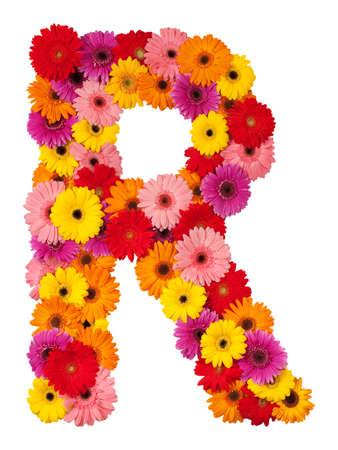 flowery: Letra R - alfabeto de flores aisladas sobre fondo blanco