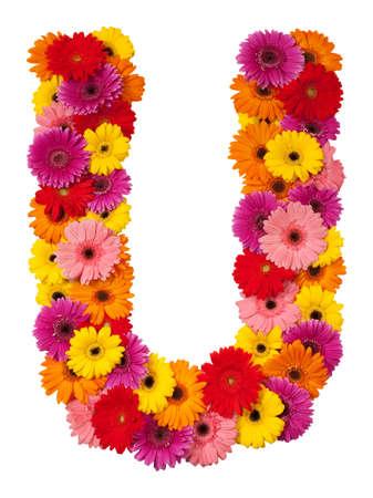 Letter U - flower alphabet isolated on white background Banco de Imagens