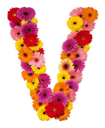 v alphabet: Letter V - flower alphabet isolated on white background