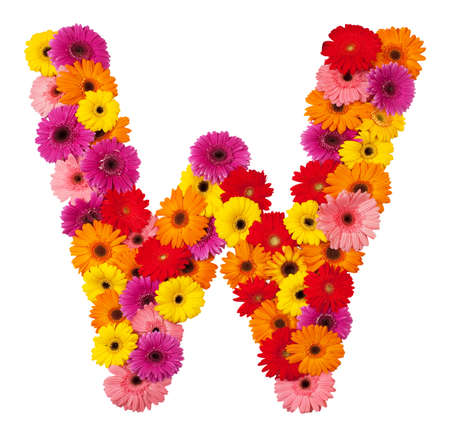 Letter W - flower alphabet isolated on white background photo