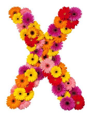 letter x: Letter X - flower alphabet isolated on white background