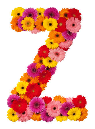 Letter Z - flower alphabet isolated on white background photo