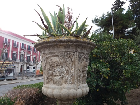 ancient vase with plant in the garden