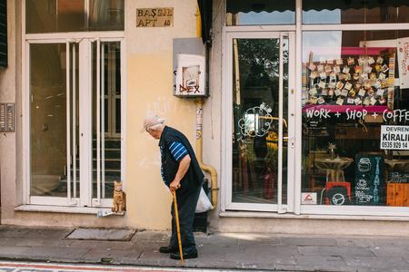 Istanbul, 14 juni 2017: Een huiskat ontmoet de eigenaar van een oudere man die terugkomt met aankopen uit de winkel bij hem thuis. Turkije.