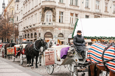 Prague, December 13, 2016: Christmas in Prague. Horses with carts and coachman are waiting for tourists in the main square in Prague during the Christmas holidays