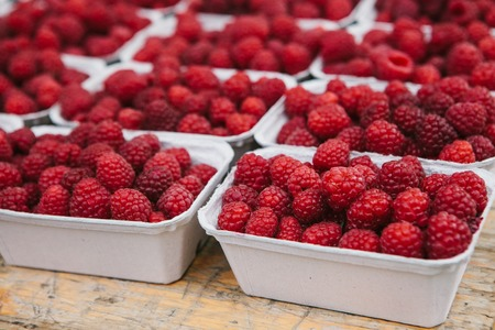 A lot of raspberries in containers on the table in a row. Useful food is rich in vitamins. Harvest. Stock Photo