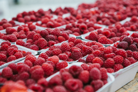 A lot of raspberries in containers on the table in a row. Useful food is rich in vitamins. Harvest. The farm market.