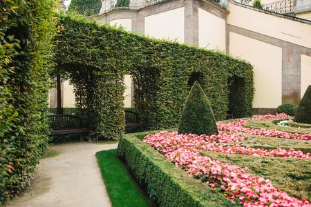 Cozy well-groomed park or garden with plants and flowers in Prague in the Czech Republic