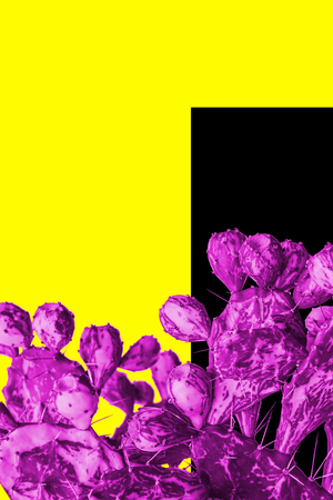 Surrealistic purple cactus on a yellow and black background in a trendy minimalist style