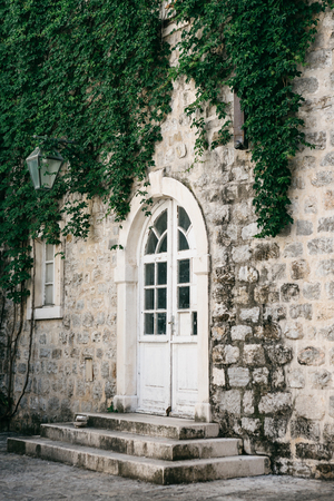 Door or entrance to a residential house decorated with plants. Standard-Bild