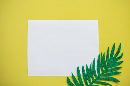 White sheet of paper for text and next to a felt sheet of fern on a yellow background. Summer design in minimal style.
