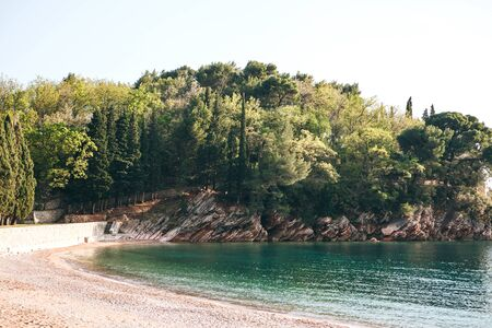 Beautiful view of the natural landscape. Rocky shore with trees and sea off the coast of Montenegro.