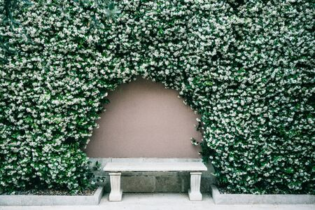 Marble bench against the wall with an arch of flowers. Фото со стока